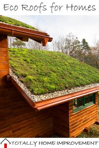 Let's Take a Look at Eco Roofs for Homes