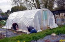 DIY Polytunnel Greenhouse
