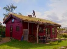 Mowing an Eco Roof