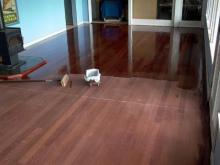 Hardwood floor being refinished