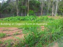 Organic farm in Australia